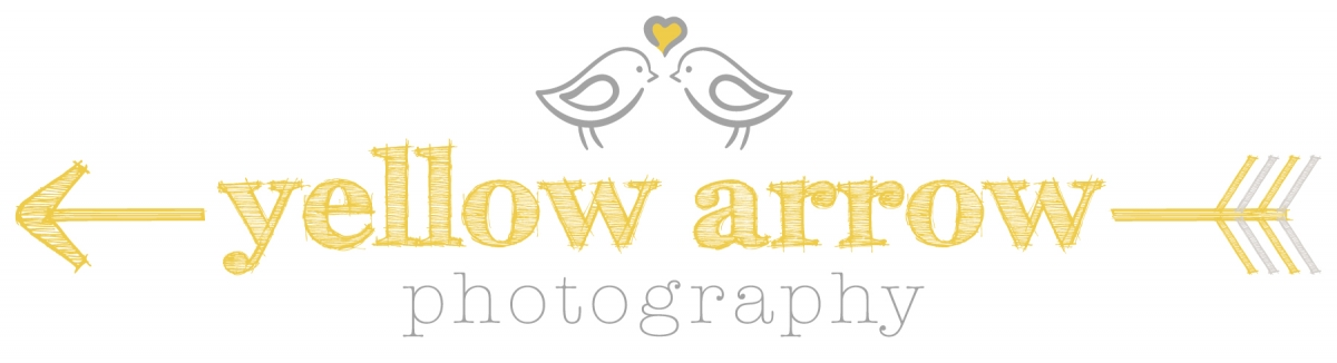 Yellow Arrow Photography » Wedding and portrait photography